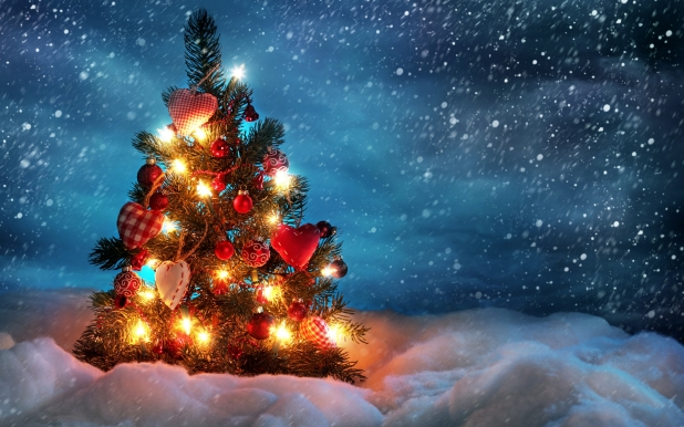 beautiful_christmas_tree-wide