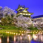 koriyama-castle-yamatokoriyama-japan-pond-trees-cherry-night-2k-wallpaper