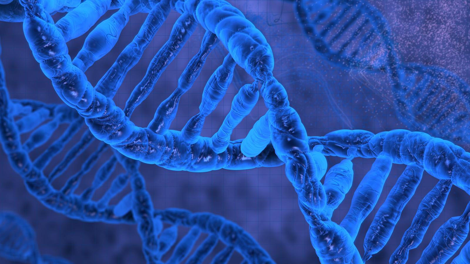 Интересные факты из биологии реферат 5934